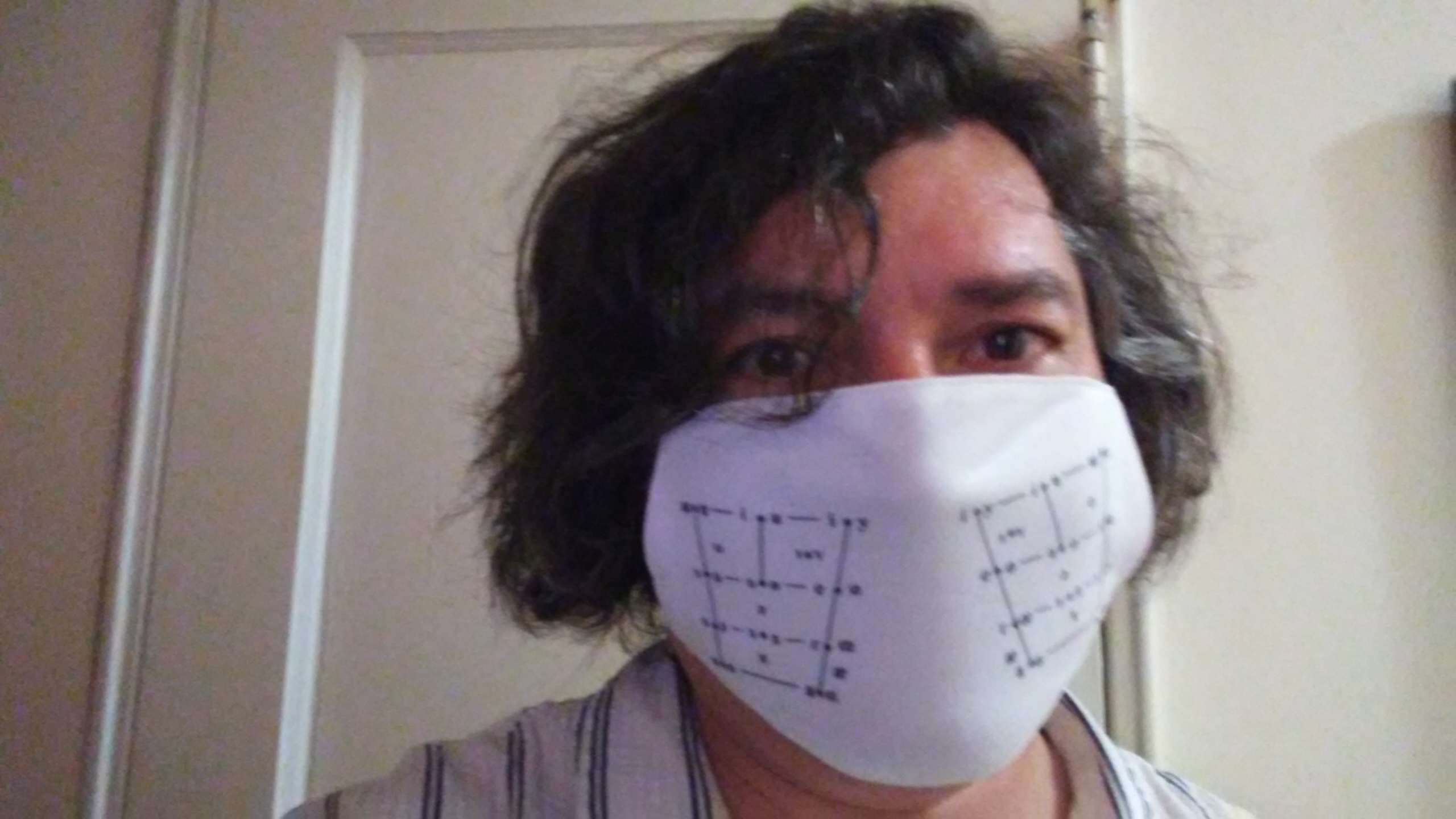 Angus Grieve-Smith wears a mask of his own design, featuring IPA vowel quadrilaterals on each cheek